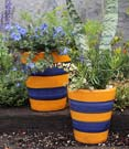 Colorful Pots Yellow Blue.jpg