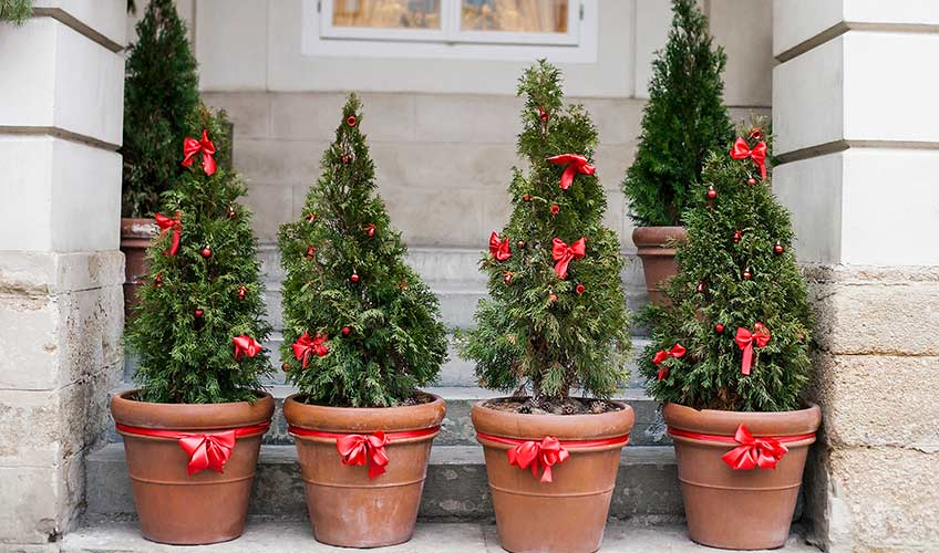 Month to Month Holiday Merchandising Guide for Garden Centers