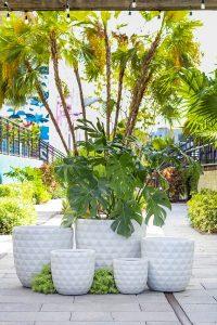 sleek modern planter